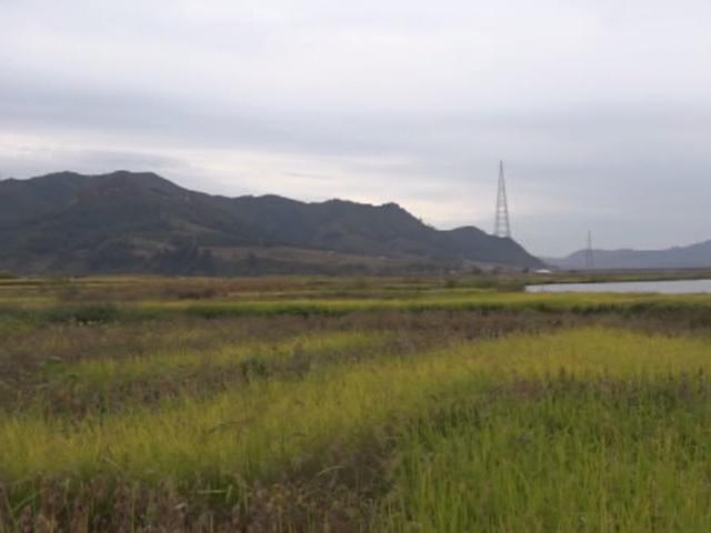 Hwanggumphyong Economic Zone