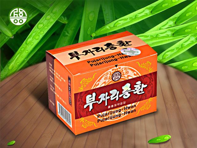 Pujarijung-Hwan