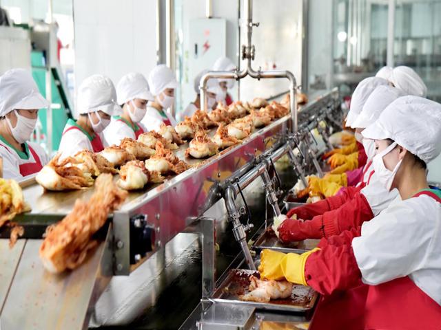 Industrialization of Kimchi production